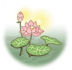 天台宗、法話(蓮の花)